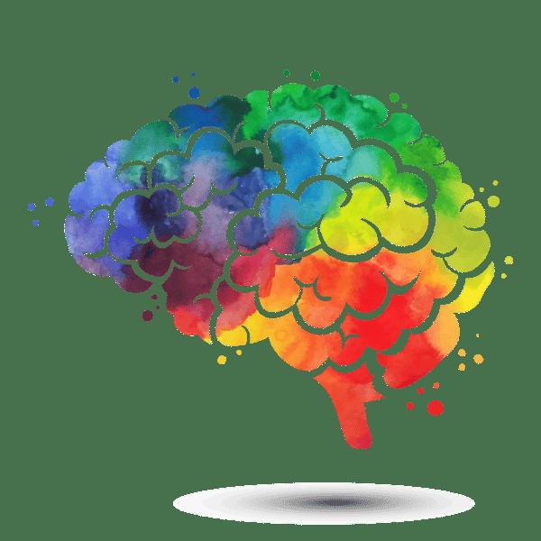 Cerebro colorido para la psicología del color